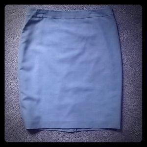 Blue/Light Slate Skirt (10)